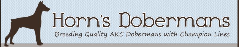 Horn's Dobermans